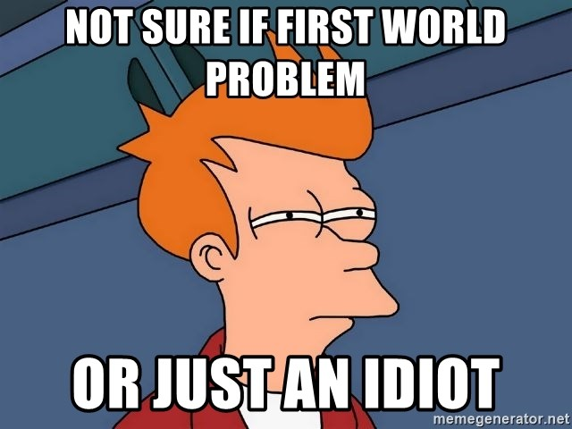 Futurama Fry - not sure if first world problem or just an idiot