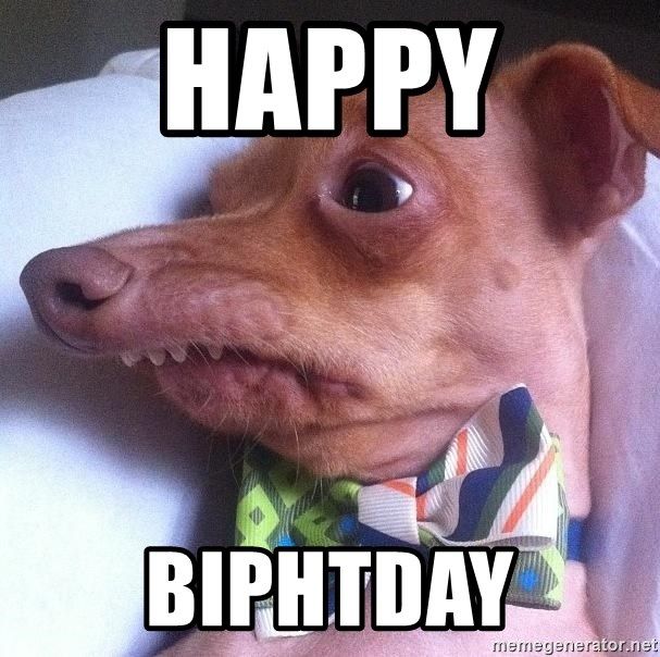 """Tuna, the """"Phteven"""" dog - happy  biphtday"""