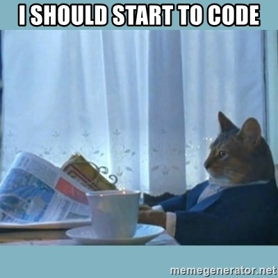 rich cat  - I SHOULD START TO CODE