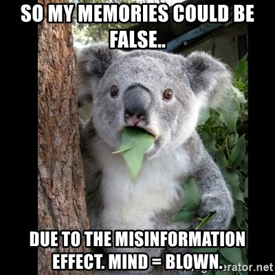 Koala can't believe it - So my memories could be false.. due to the Misinformation effect. Mind = Blown.