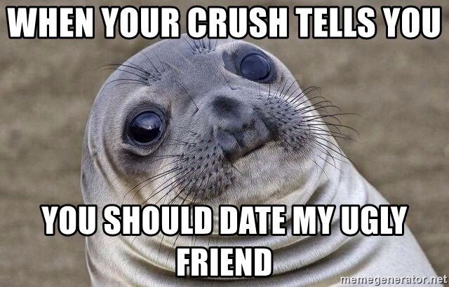 Awkward Seal - when your crush tells you  you should date my ugly friend