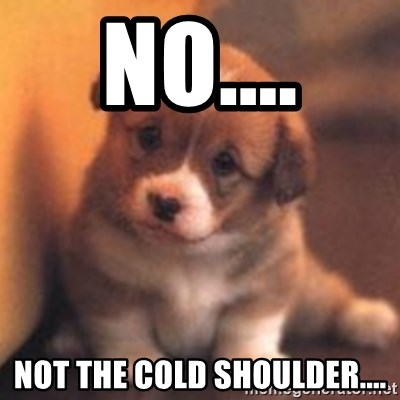 cute puppy - No.... Not the cold shoulder....