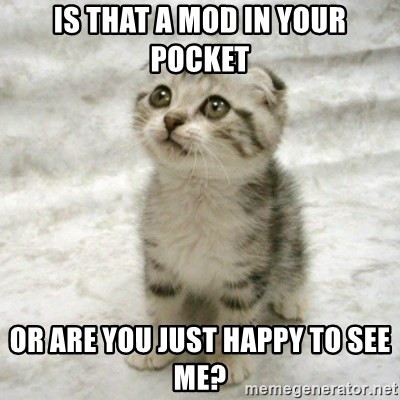 Can haz cat - is that a mod in your pocket or are you just happy to see me?