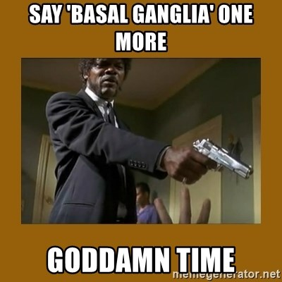 say what one more time - Say 'basal ganglia' one more goddamn time