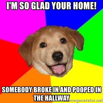 Advice Dog - I'm So Glad Your Home! SomeBody Broke in and Pooped in the Hallway