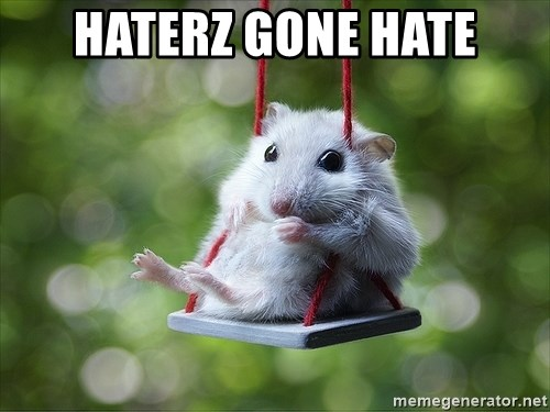 Sorry I'm not Sorry - haterz gone hate