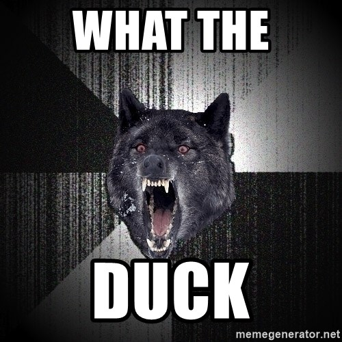 Insanity Wolf - WHAT THE  DUCK
