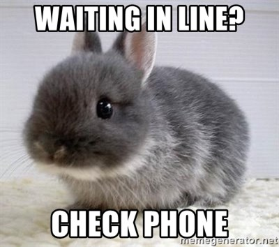 ADHD Bunny - waiting in line? check phone
