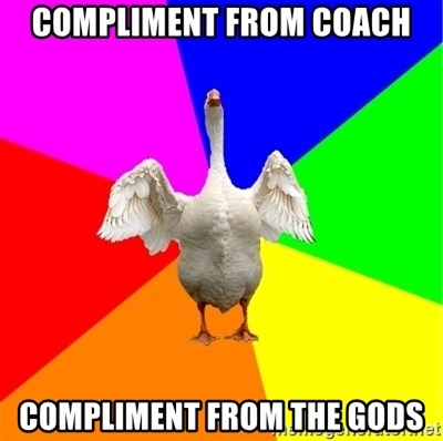 Guardgoose - Compliment from coach compliment from the gods