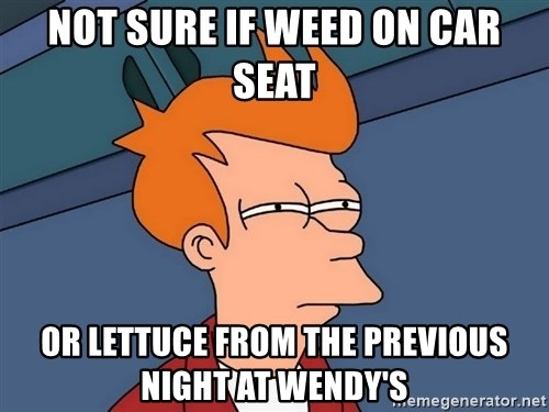 Futurama Fry - not sure if weed on car seat or lettuce from the previous night at wendy's