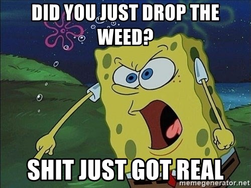 Spongebob Rage - did you just drop the weed? shit just got real