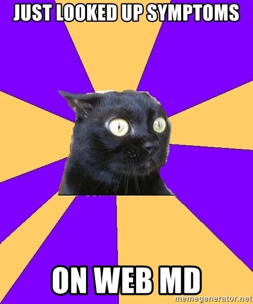 Anxiety Cat - Just looked up symptoms on web mD
