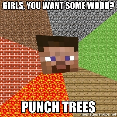 Minecraft Guy - girls, you want some wood? punch trees