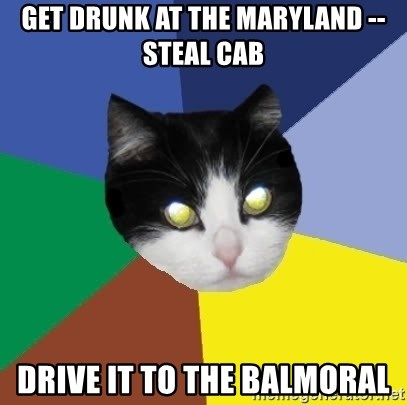 Winnipeg Cat - Get drunk at the maryland -- Steal cab Drive it to the Balmoral