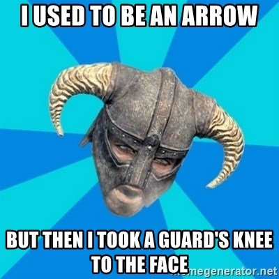 skyrim stan - I used to be an arrow but then i took a guard's knee to the face