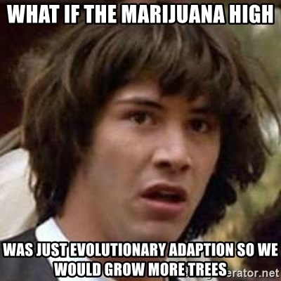 Conspiracy Keanu - what if the marijuana high was just evolutionary adaption so we would grow more trees