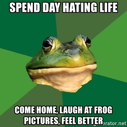 Foul Bachelor Frog - spend day hating life come home, laugh at frog pictures, feel better