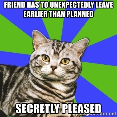 Introvert Cat - Friend has to unexpectedly leave earlier than planned secretly pleased