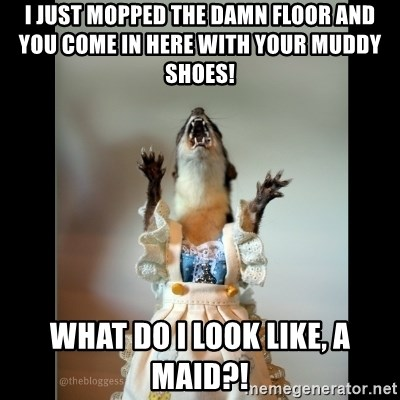 Juanita Weasel - I just mopped the damn floor and you come in here with your muddy shoes!  What do I look like, a maid?!