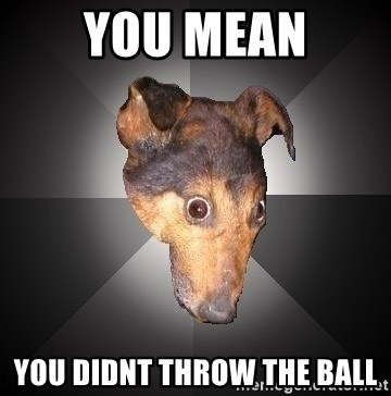 Depression Dog - you mean you didnt throw the ball