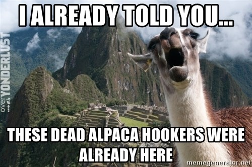 i already told you these dead alpaca hookers were already here i already told you these dead alpaca hookers were already here,Alpaca Meme Generator
