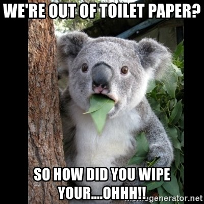 Koala can't believe it - We're out of toilet paper? SO HOW DID YOU WIPE YOUR....OHHH!!