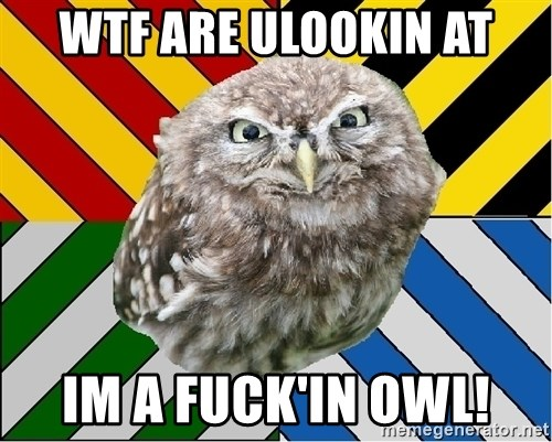 JEALOUS POTTEROMAN - WTF are ulookin at Im a fuck'in owl!