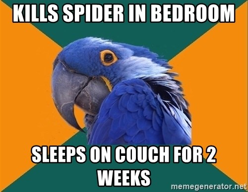 Paranoid Parrot - Kills spider in bedroom sleeps on couch for 2 weeks