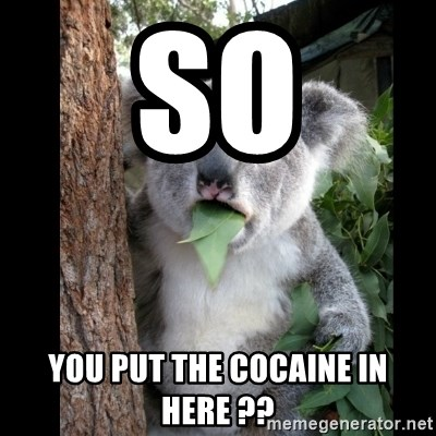 Koala can't believe it - so you put the cocaine in here ??
