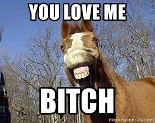 Horse - You love me bitch