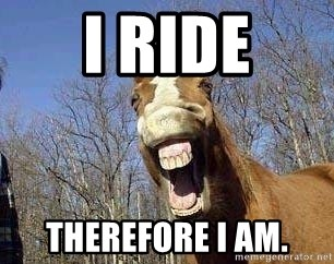 Horse - I ride therefore i am.