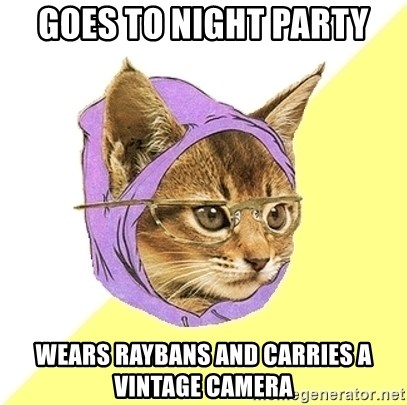 Hipster Kitty - goes to night party wears raybans and carries a vintage camera