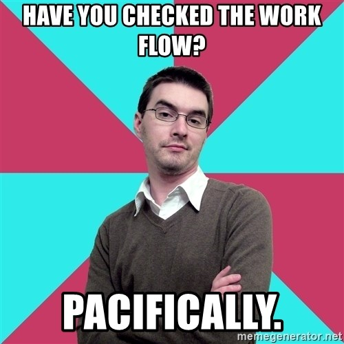 Privilege Denying Dude - HAVE YOU CHECKED THE WORK FLOW? pacifically.