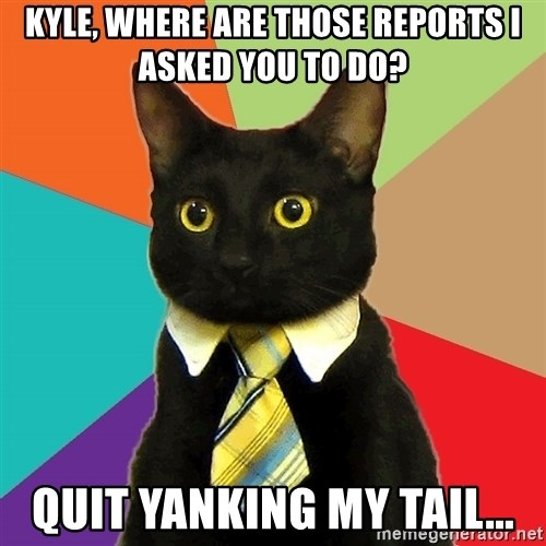 Business Cat - Kyle, where are those reports I asked you to do? Quit yanking my tail...