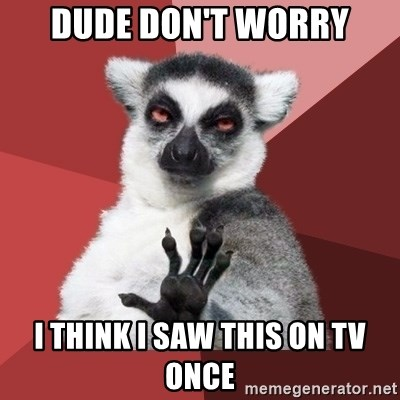 Chill Out Lemur - Dude don't worry I think I saw this on tv once