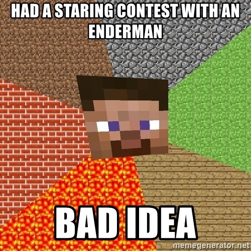 Minecraft Guy - Had a staring contest with an enderman bad idea