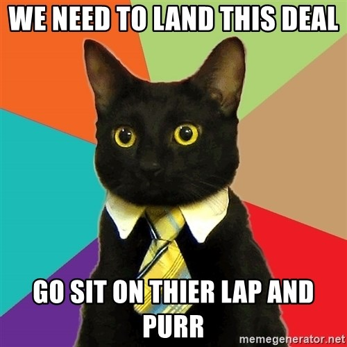 Business Cat - We need to land this deal Go sit on thier lap and purr