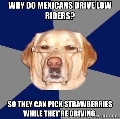 Racist Dawg - Why do mexicans drive low riders? So they can pick strawberries while they're driving.