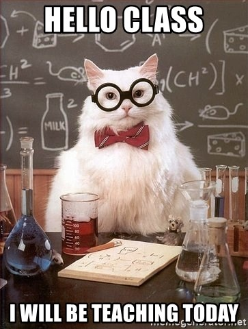 Chemistry Cat - Hello class I will be teaching today