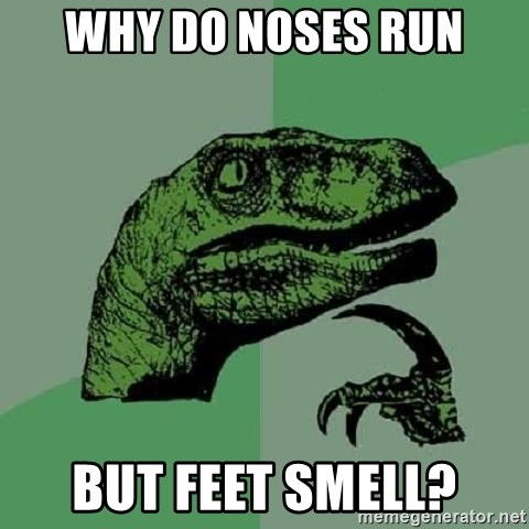 Philosoraptor - why do noses run but feet smell?