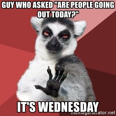 """Chill Out Lemur - guy who asked """"are people going out today?"""" it's wednesday"""