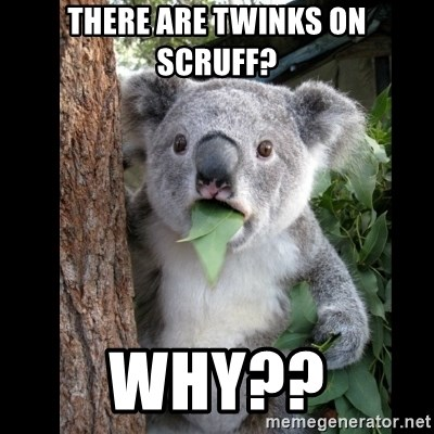 Koala can't believe it - There are twinks on scruff? WHY??
