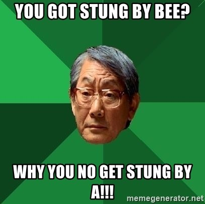 High Expectations Asian Father - you got stung by bee? Why you no get stung by a!!!