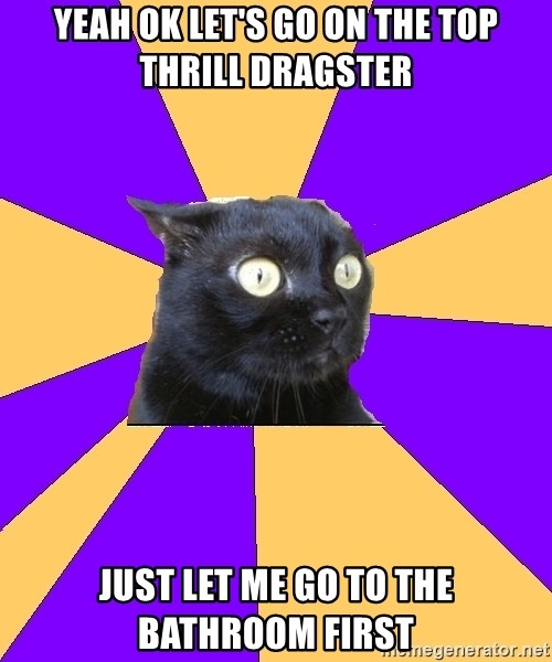 Anxiety Cat - yeah ok let's go on the top thrill dragster just let me go to the bathroom first