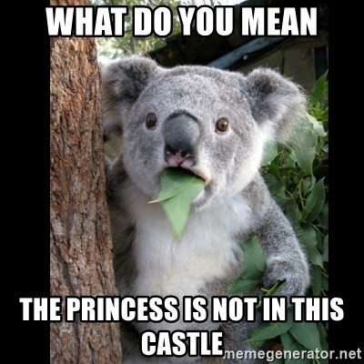 Koala can't believe it - what do you mean the princess is not in this castle