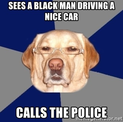 Racist Dog - Sees a black man driving a nice car Calls the police