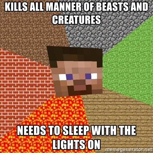 Minecraft Guy - Kills all manner of beasts and creatures needs to sleep with the lights on