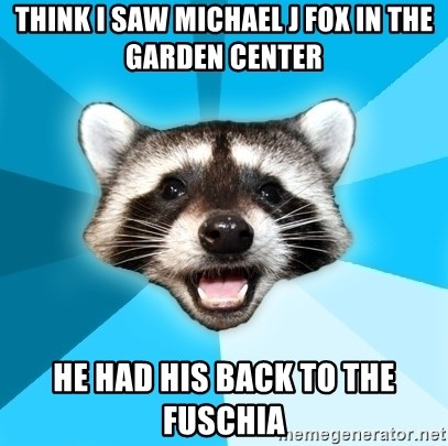 Lame Pun Coon - think i saw michael j fox in the garden center he had his back to the fuschia