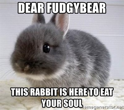 ADHD Bunny - Dear fudgybear this rabbit is here to eat your soul