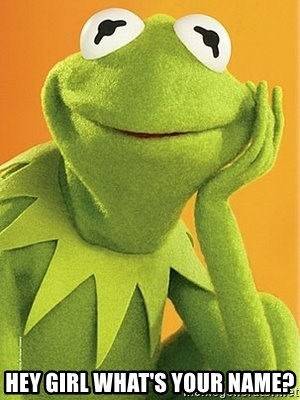 Kermit the frog - Hey girl what's your name?